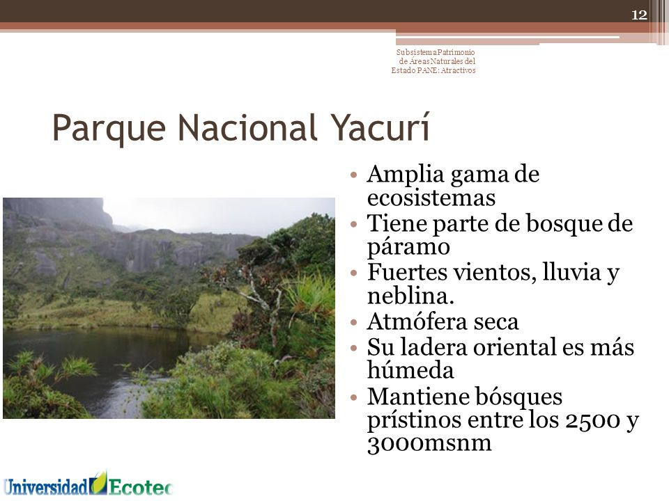 Parque Nacional Yacurí