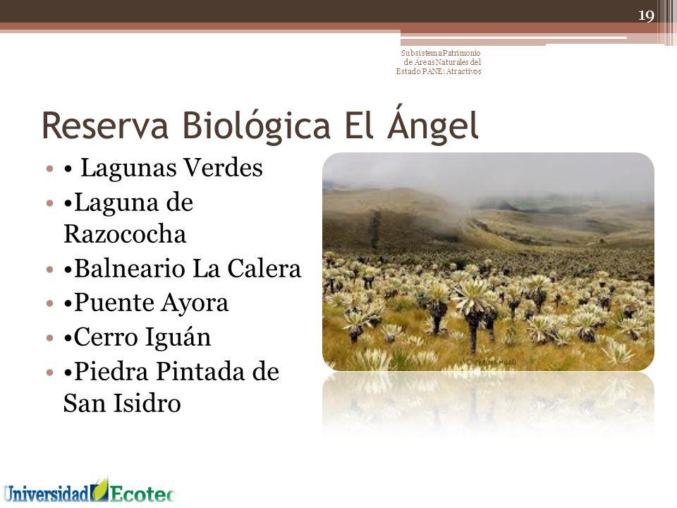 Reserva Biológica El Ángel