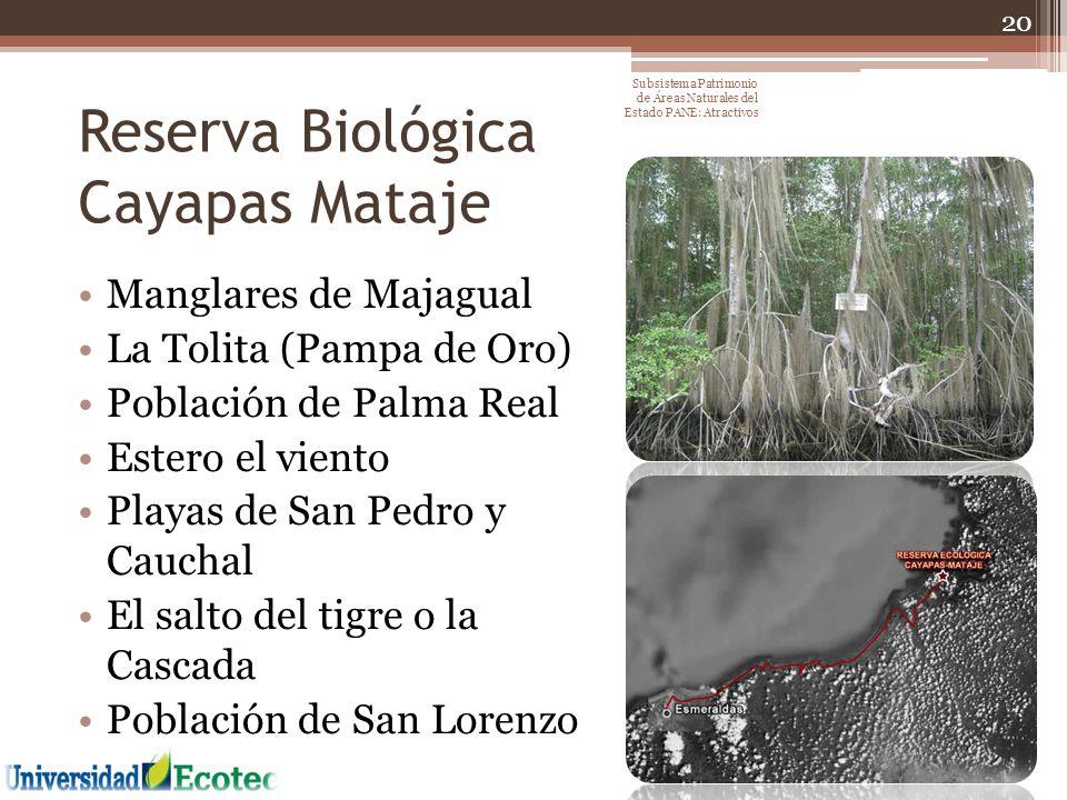 Reserva Biológica Cayapas Mataje