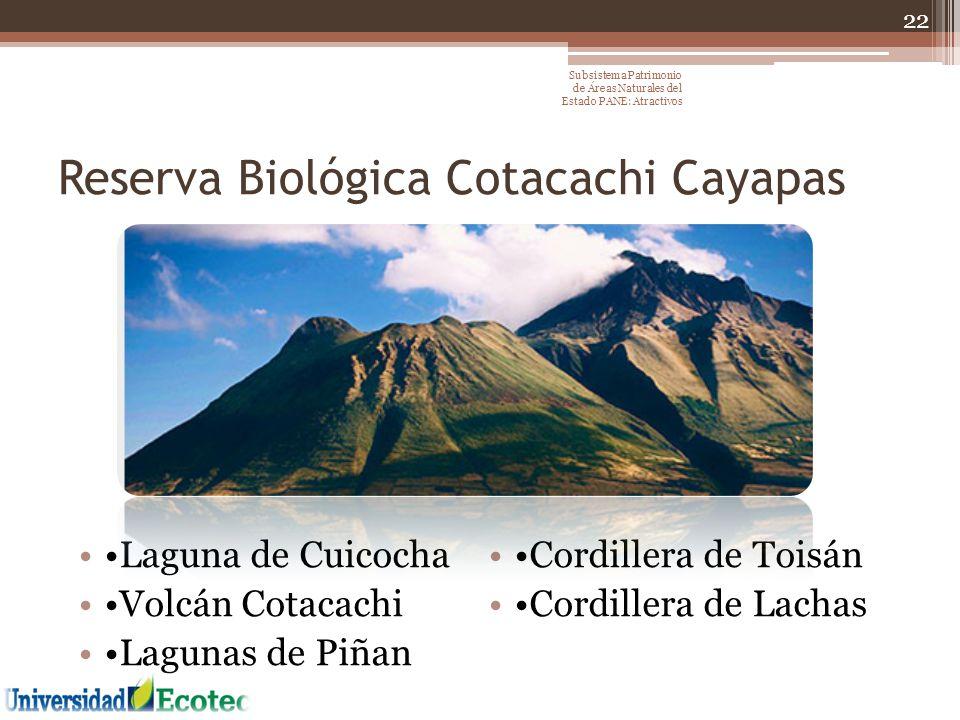 Reserva Biológica Cotacachi Cayapas