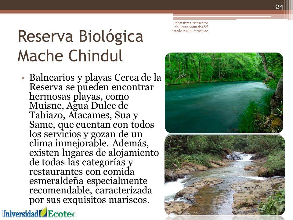 Reserva Biológica Mache Chindul