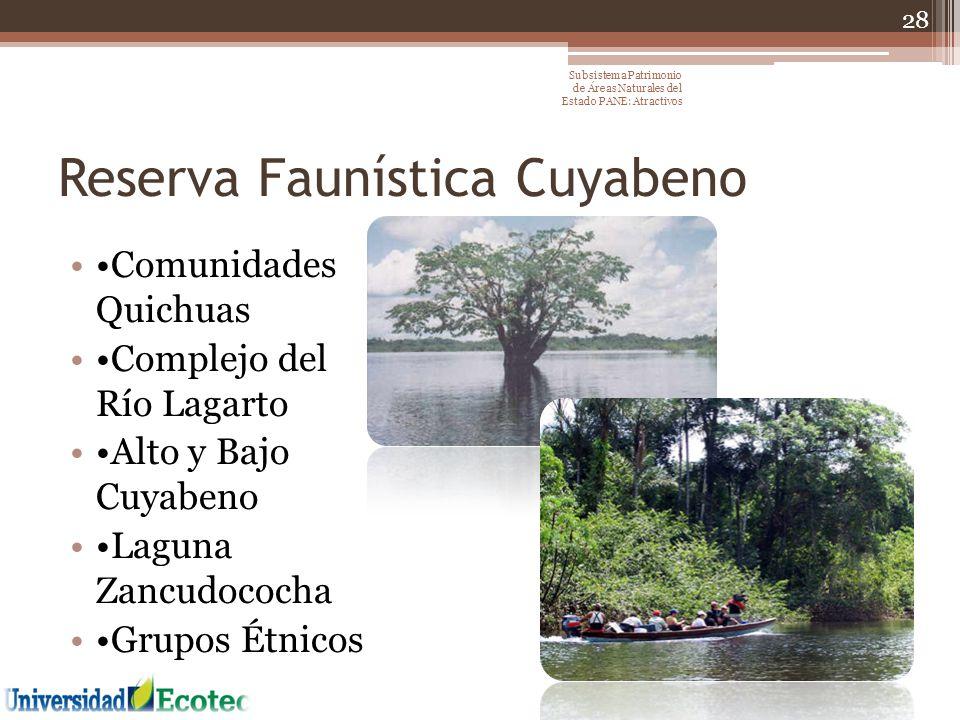 Reserva Faunística Cuyabeno