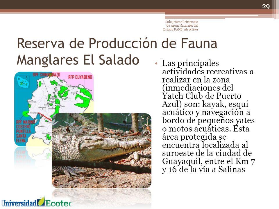 Reserva de Producción de Fauna Manglares El Salado