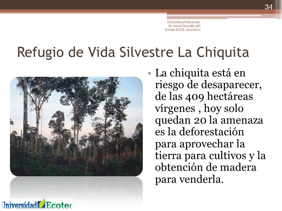 Refugio de Vida Silvestre La Chiquita