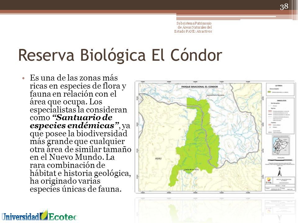 Reserva Biológica El Cóndor