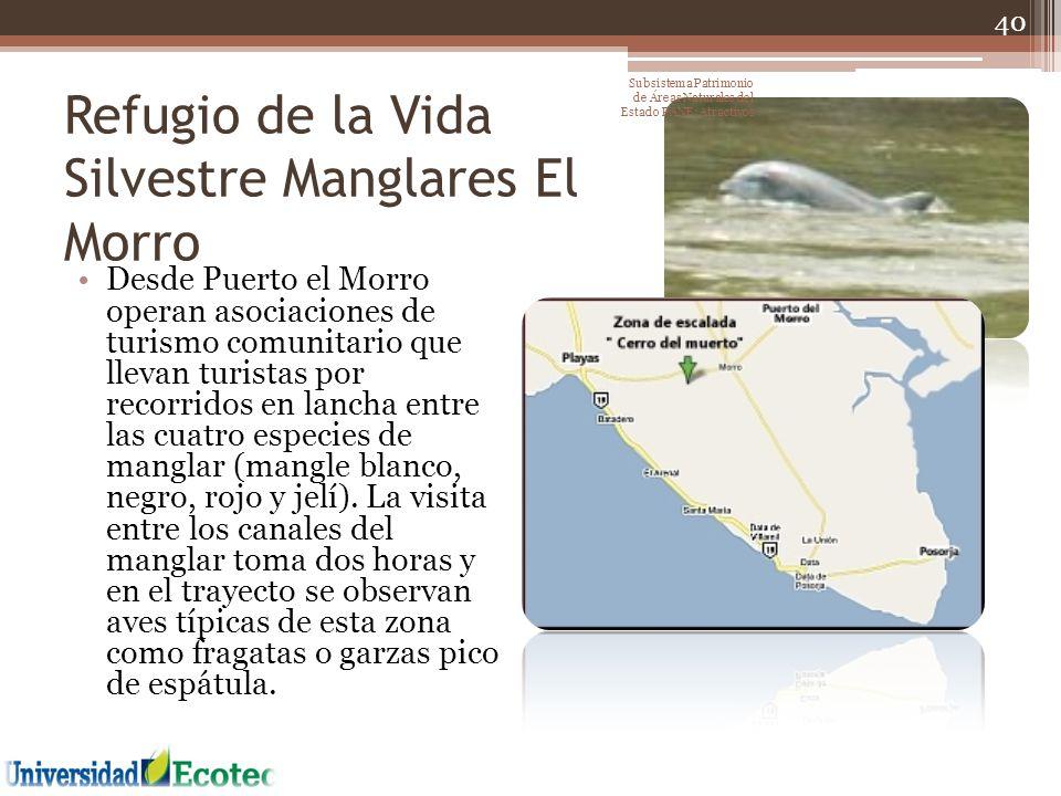 Refugio de la Vida Silvestre Manglares El Morro