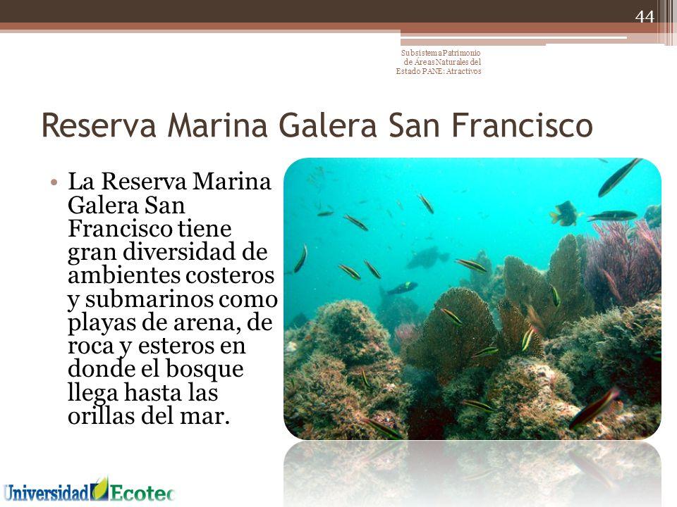 Reserva Marina Galera San Francisco