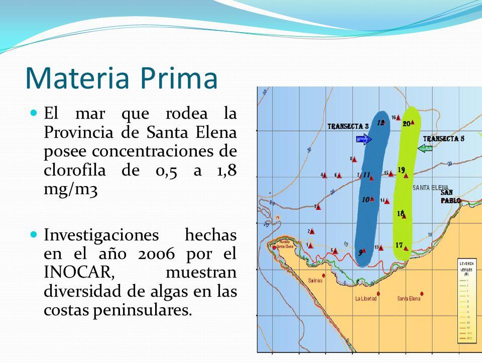 Materia Prima El mar que rodea la Provincia de Santa Elena posee concentraciones de clorofila de 0,5 a 1,8 mg/m3.