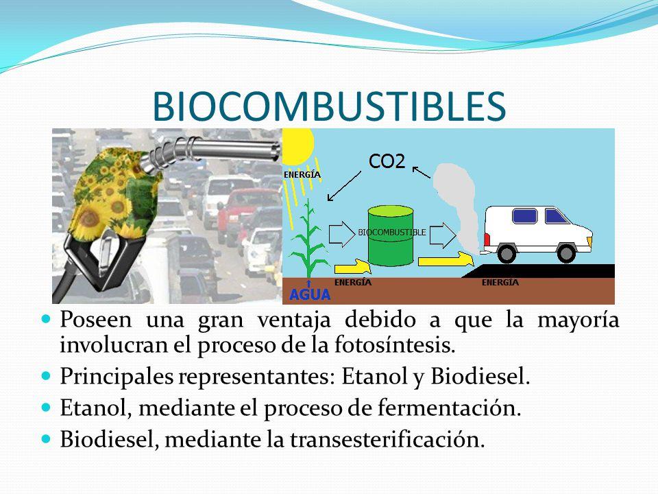 BIOCOMBUSTIBLES Poseen una gran ventaja debido a que la mayoría involucran el proceso de la fotosíntesis.