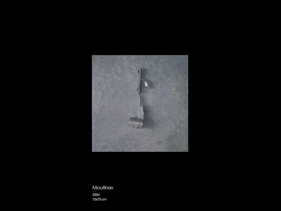 Moulinex 2004 75x75 cm