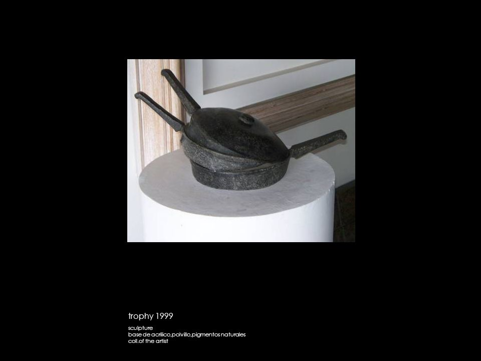 trophy 1999 sculpture base de acrilico,polvillo,pigmentos naturales coll.of the artist