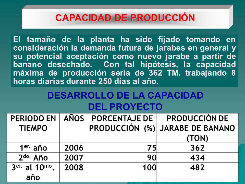 DESARROLLO DE LA CAPACIDAD DEL PROYECTO