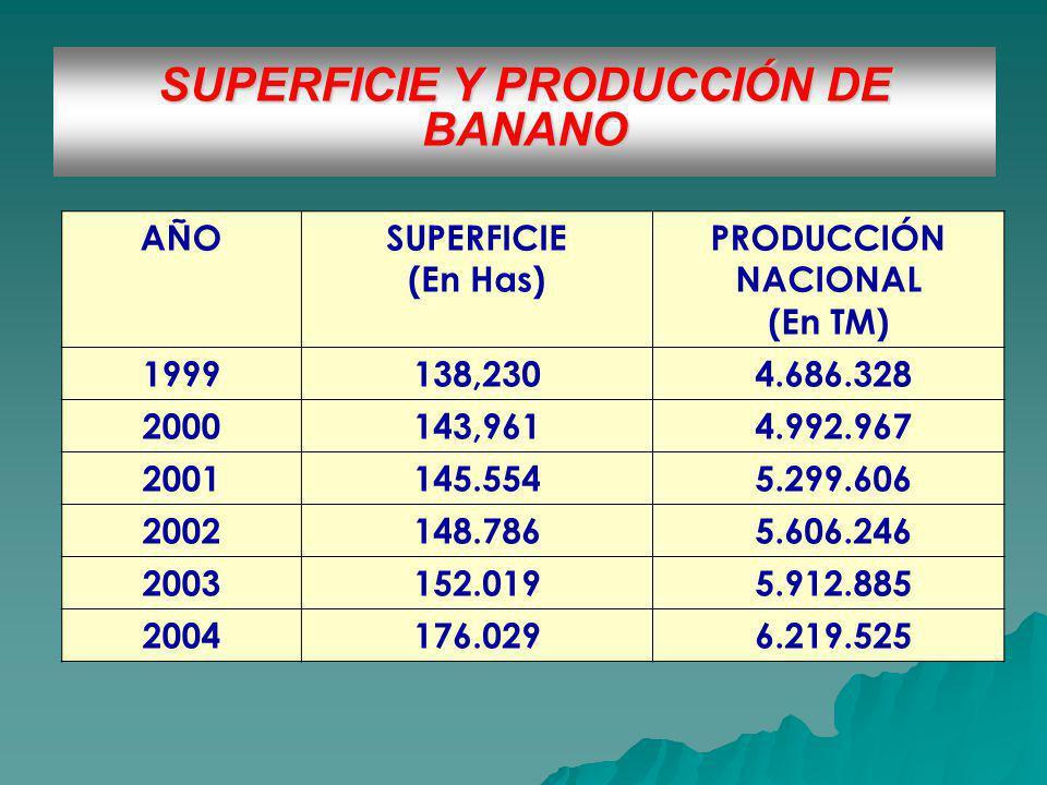 SUPERFICIE Y PRODUCCIÓN DE BANANO