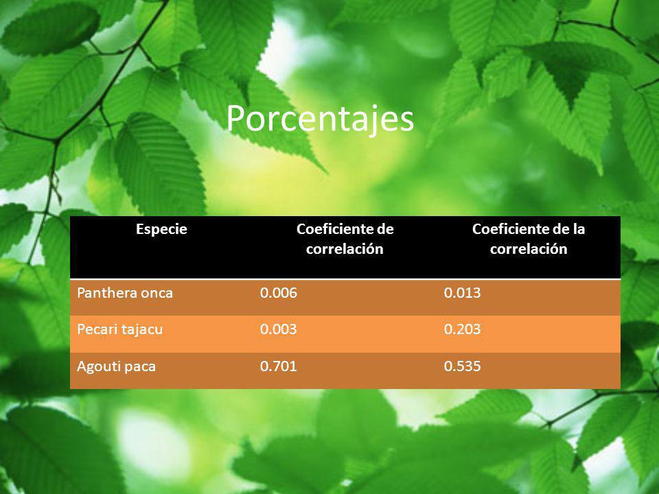 Coeficiente de correlación Coeficiente de la correlación