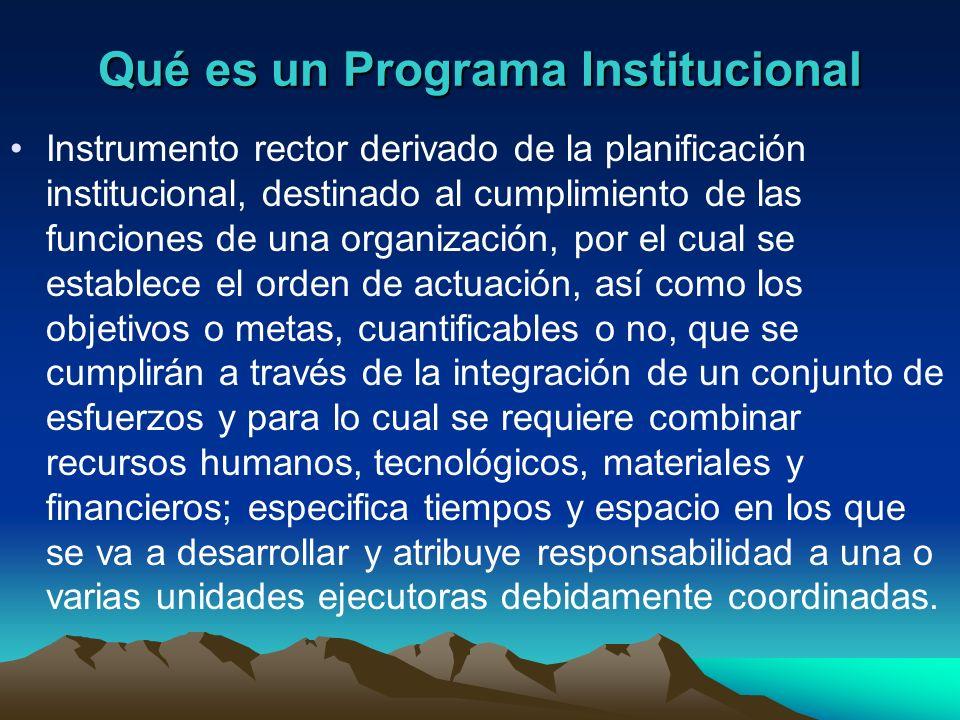 Qué es un Programa Institucional