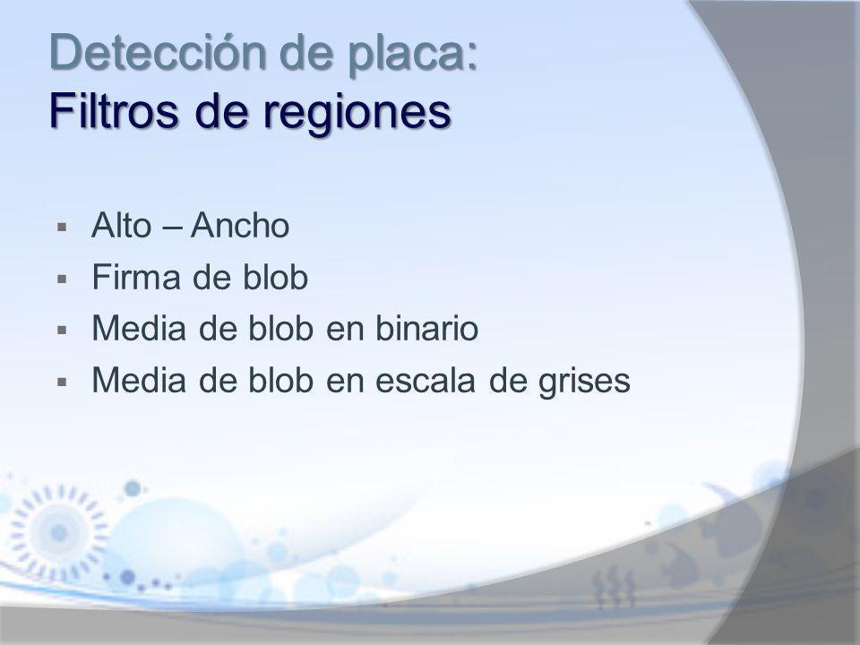Detección de placa: Filtros de regiones
