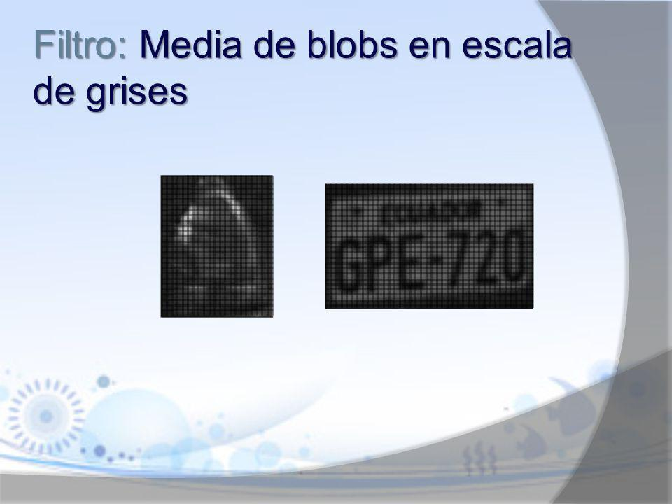 Filtro: Media de blobs en escala de grises