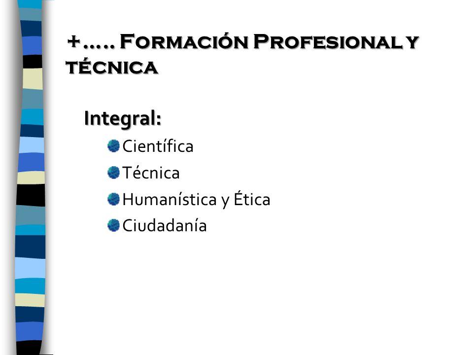 +….. Formación Profesional y técnica
