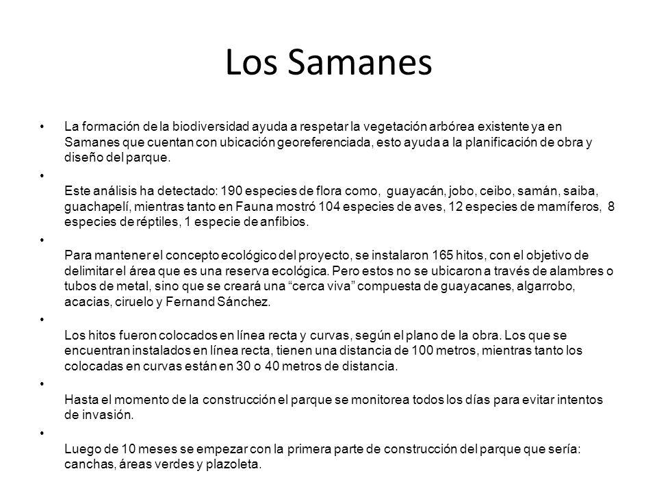 Los Samanes