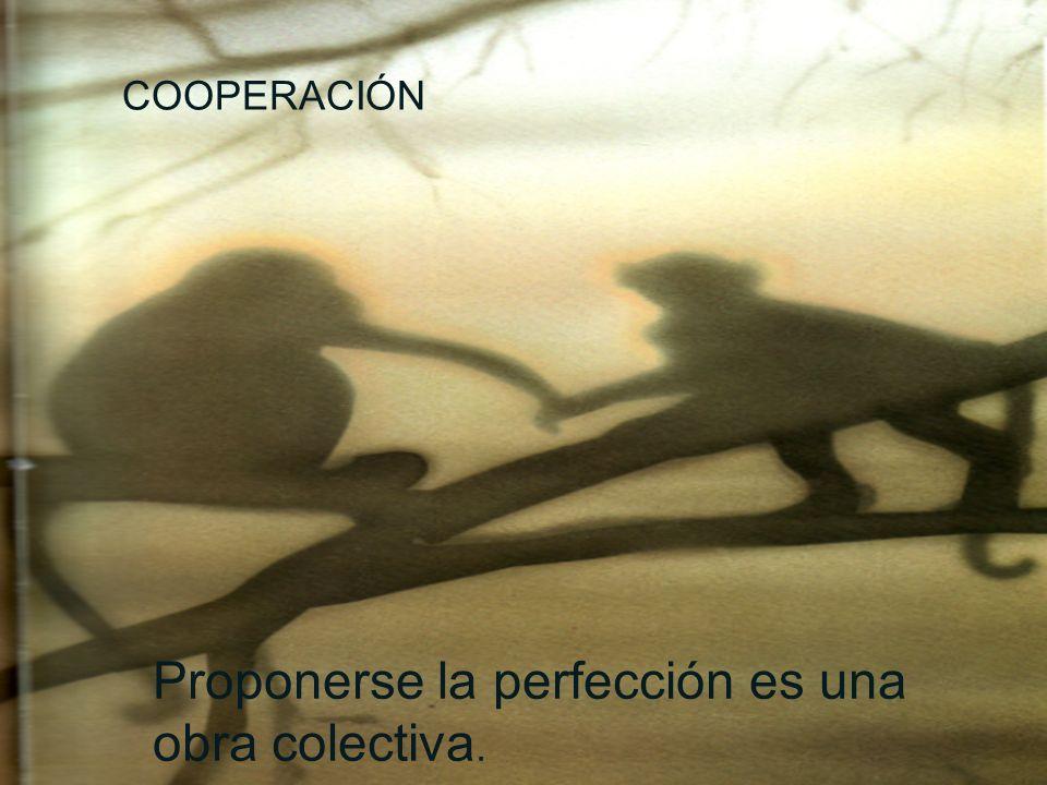 Proponerse la perfección es una obra colectiva.