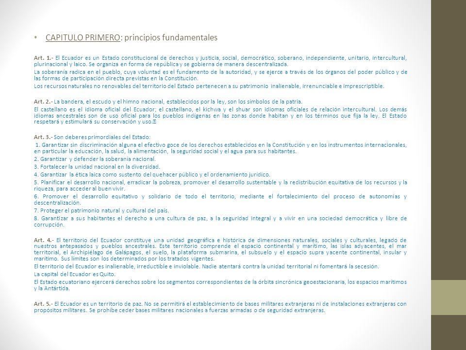 CAPITULO PRIMERO: principios fundamentales