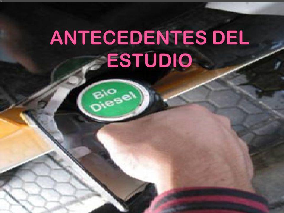 ANTECEDENTES DEL ESTUDIO