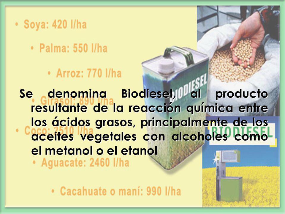 Se denomina Biodiesel, al producto resultante de la reacción química entre los ácidos grasos, principalmente de los aceites vegetales con alcoholes como el metanol o el etanol