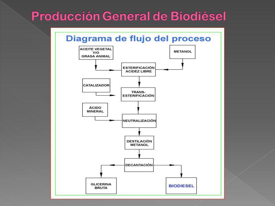 Producción General de Biodiésel