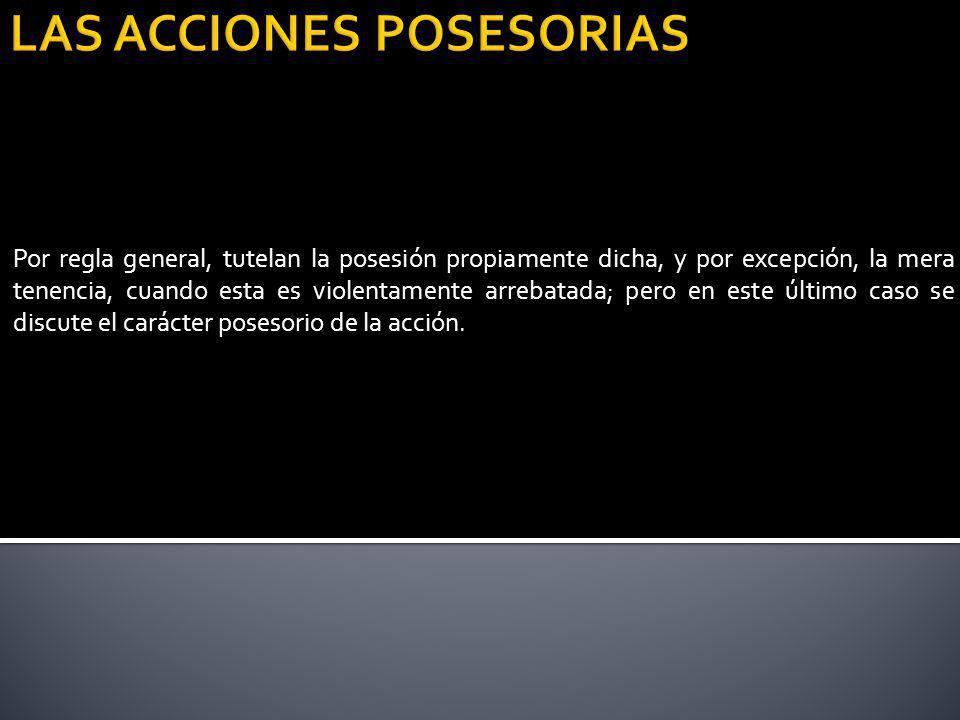 LAS ACCIONES POSESORIAS