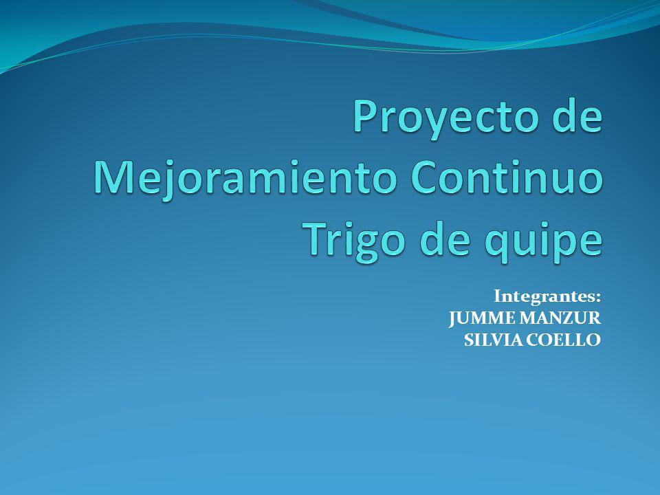 Proyecto de Mejoramiento Continuo Trigo de quipe