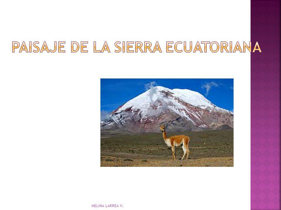 PAISAJE DE LA SIERRA ECUATORIANA