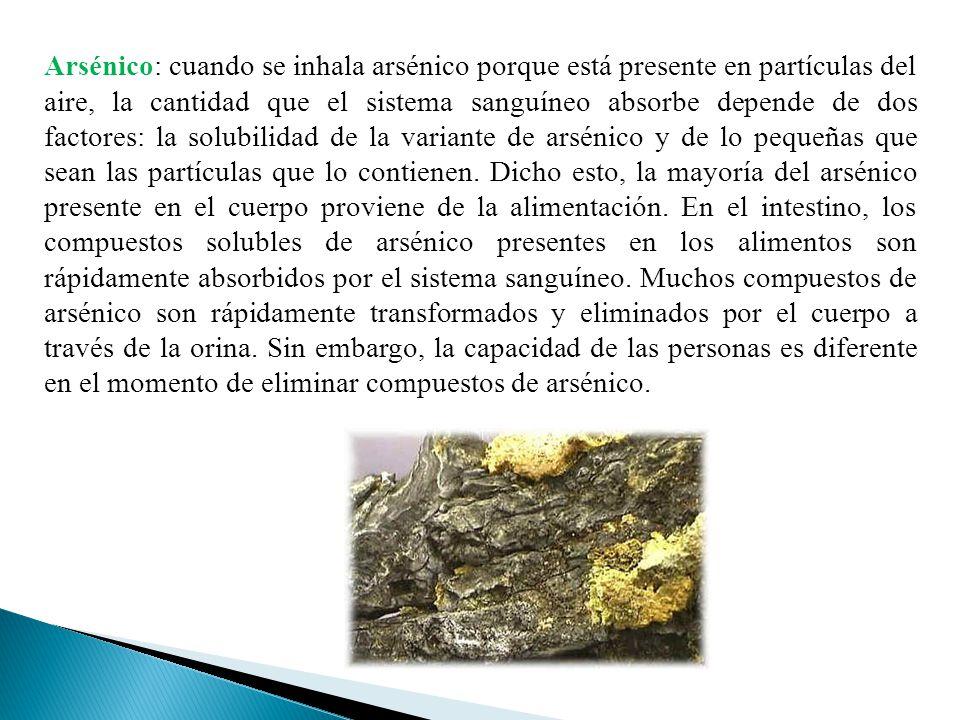 Arsénico: cuando se inhala arsénico porque está presente en partículas del aire, la cantidad que el sistema sanguíneo absorbe depende de dos factores: la solubilidad de la variante de arsénico y de lo pequeñas que sean las partículas que lo contienen.