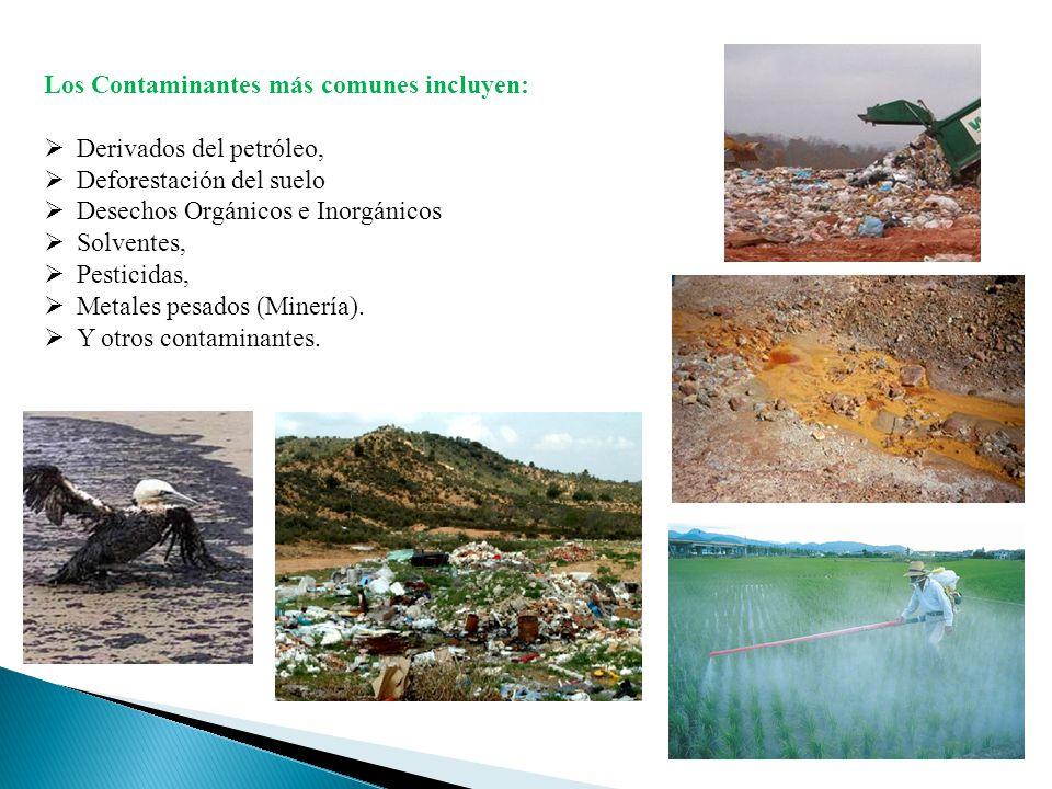 Los Contaminantes más comunes incluyen: