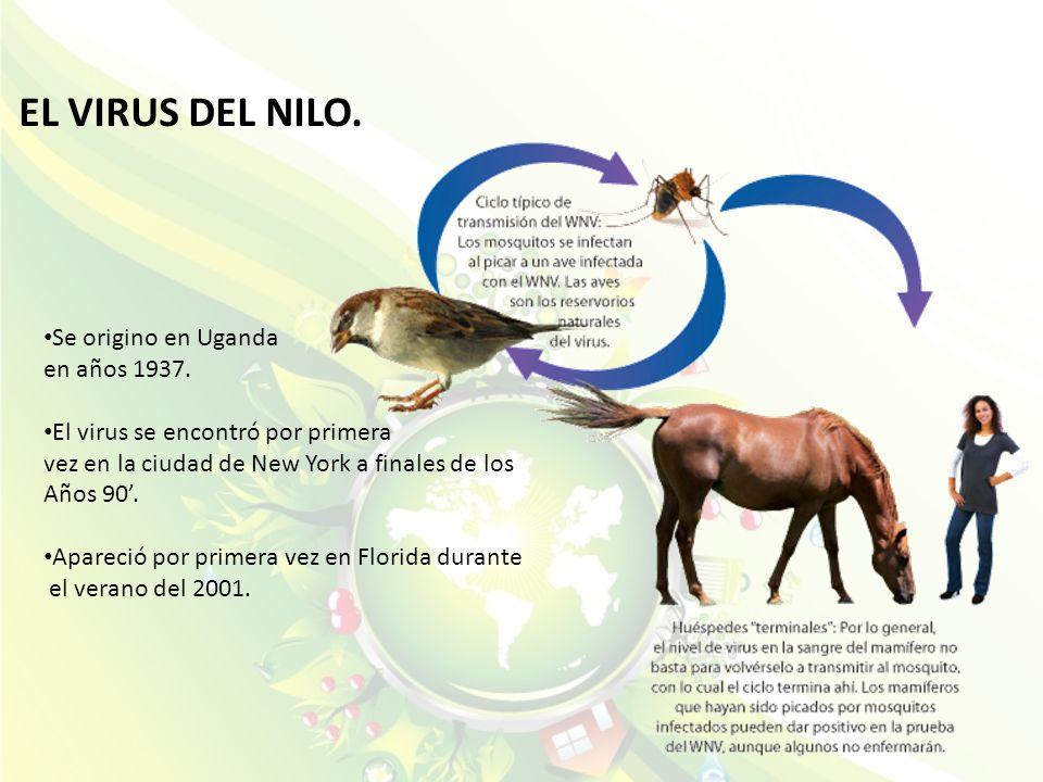EL VIRUS DEL NILO. Se origino en Uganda en años 1937.