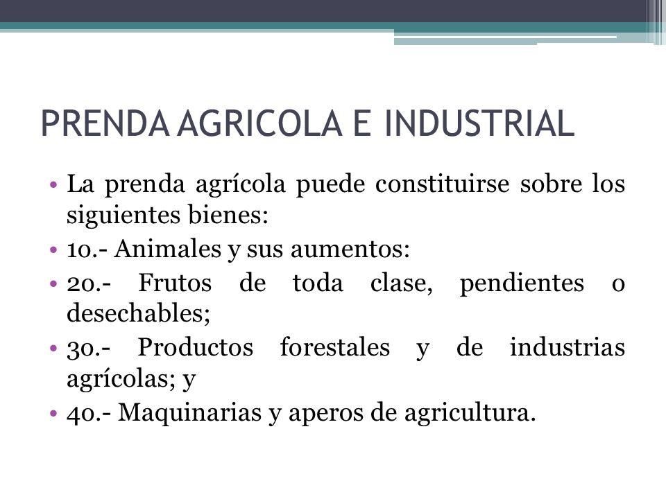 PRENDA AGRICOLA E INDUSTRIAL
