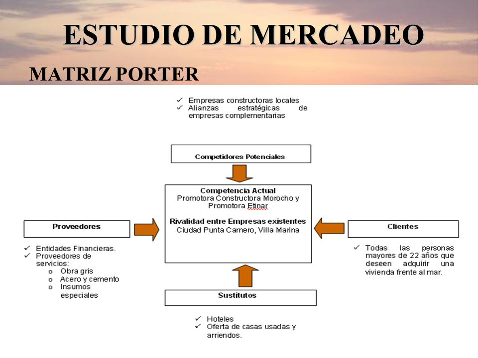 ESTUDIO DE MERCADEO MATRIZ PORTER