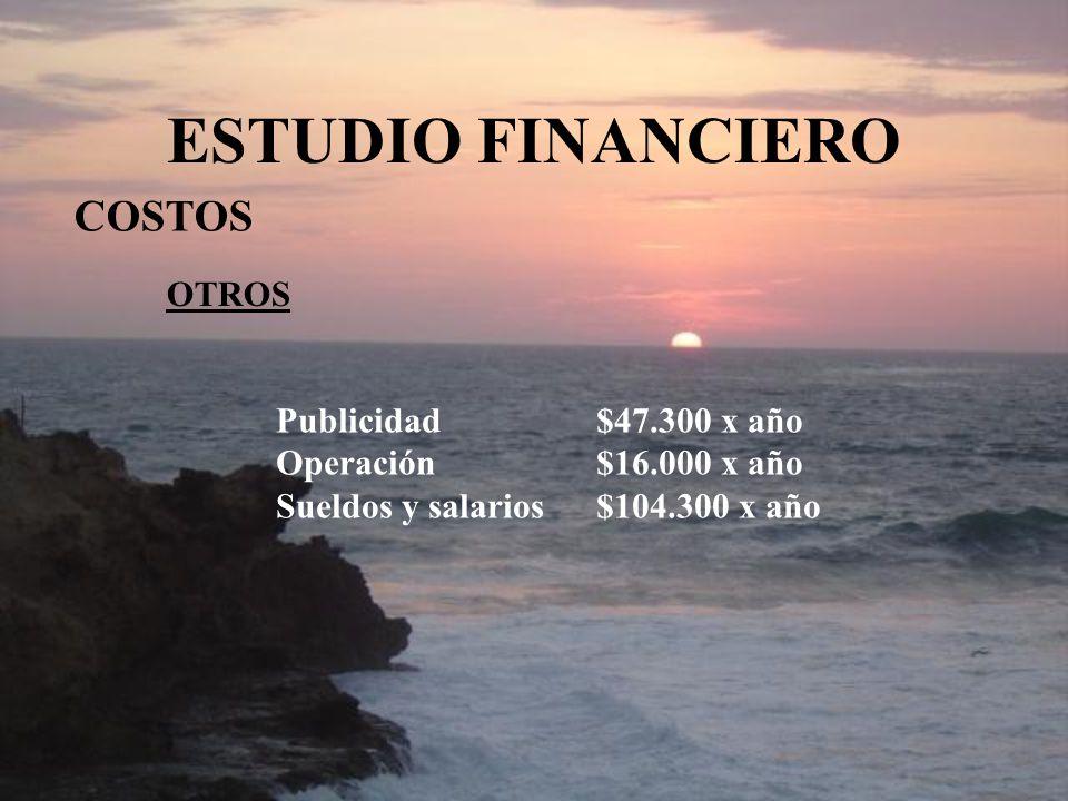 ESTUDIO FINANCIERO COSTOS OTROS Publicidad $47.300 x año