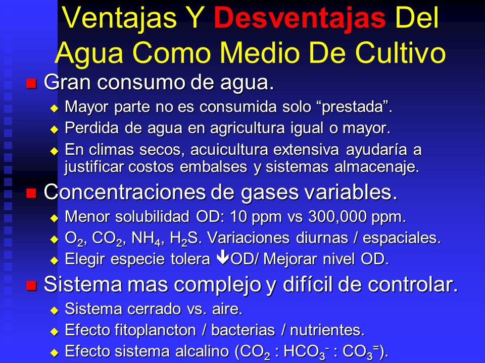 Ventajas Y Desventajas Del Agua Como Medio De Cultivo