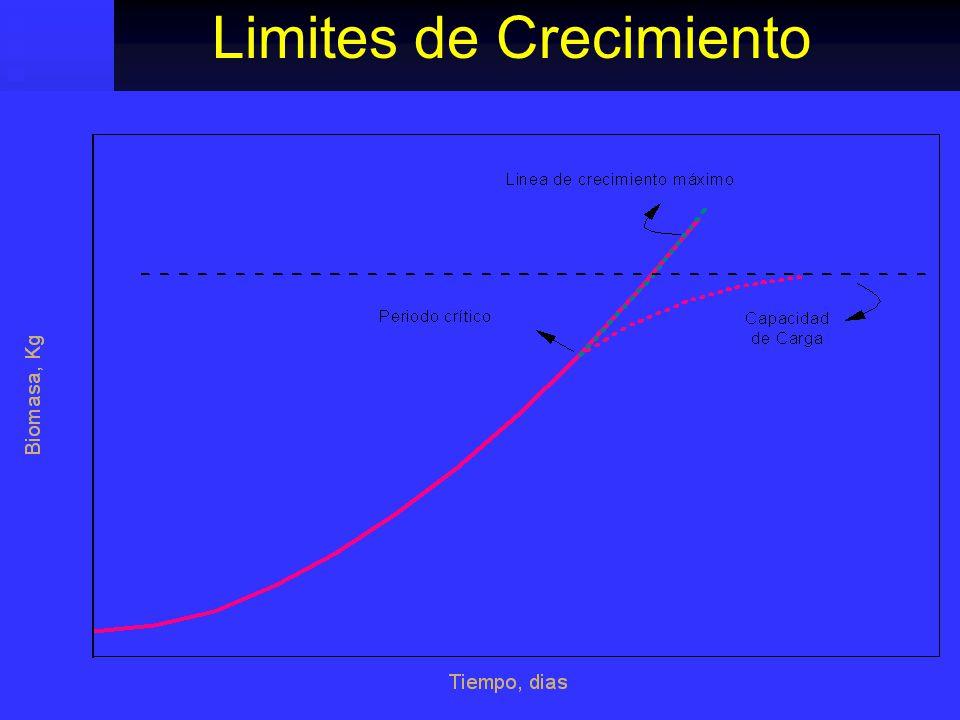 Limites de Crecimiento
