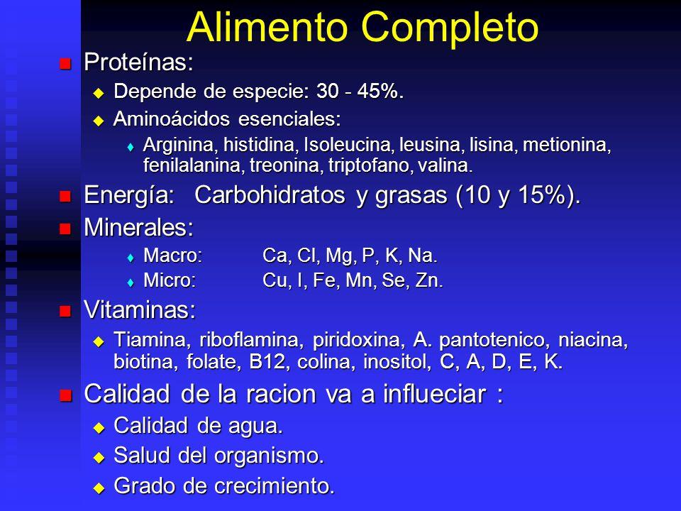 Alimento Completo Calidad de la racion va a influeciar : Proteínas:
