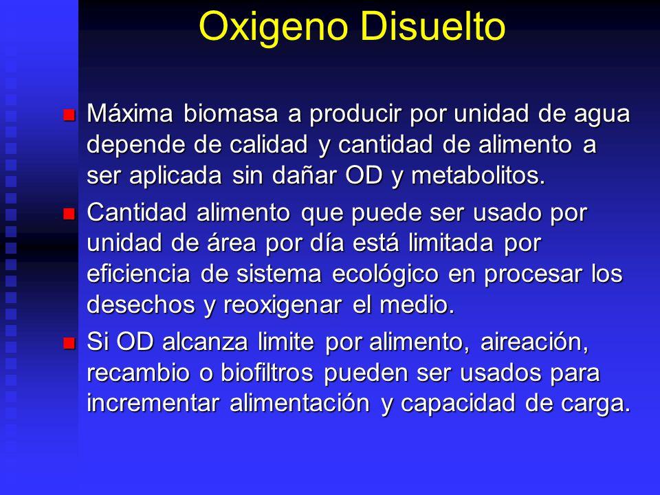 Oxigeno Disuelto Máxima biomasa a producir por unidad de agua depende de calidad y cantidad de alimento a ser aplicada sin dañar OD y metabolitos.