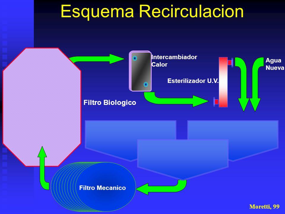 Esquema Recirculacion