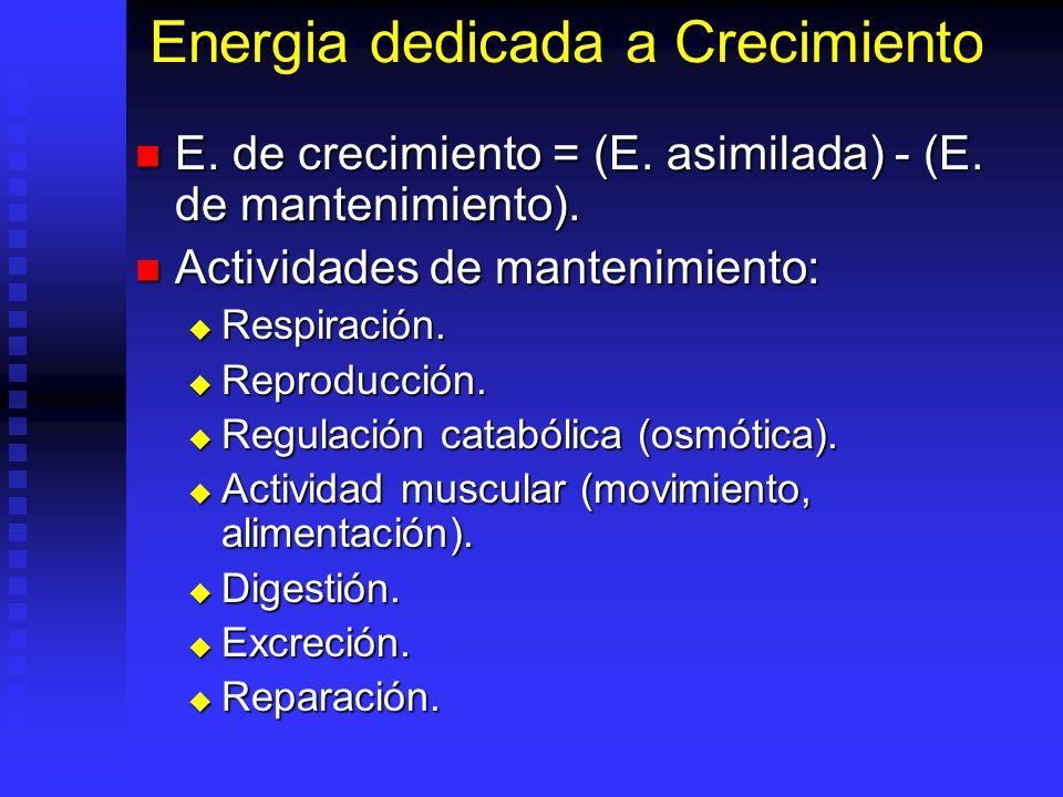 Energia dedicada a Crecimiento
