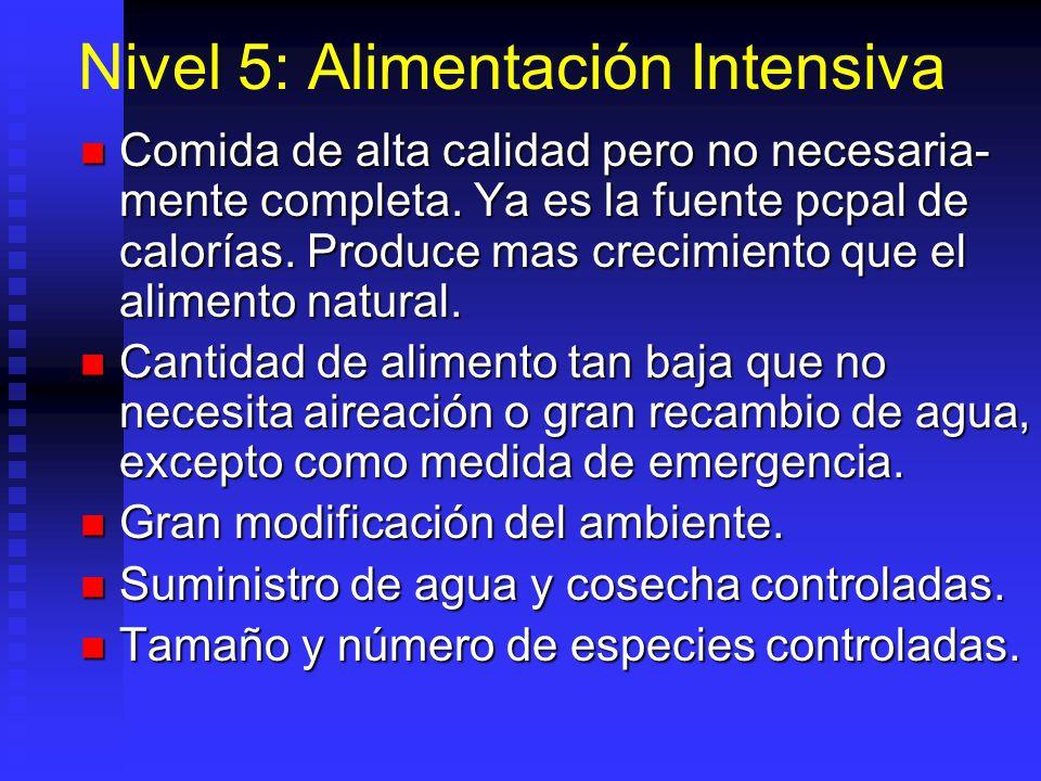 Nivel 5: Alimentación Intensiva