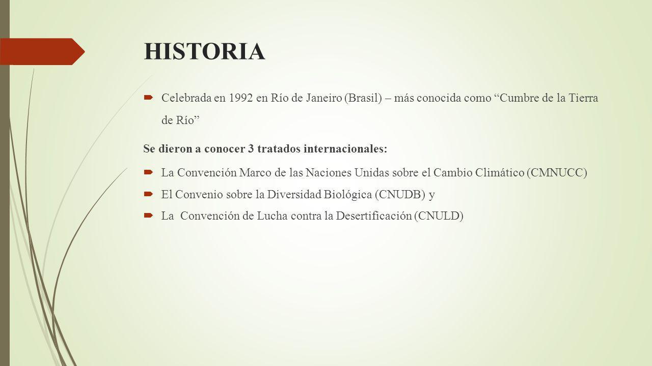 HISTORIA Celebrada en 1992 en Río de Janeiro (Brasil) – más conocida como Cumbre de la Tierra de Río