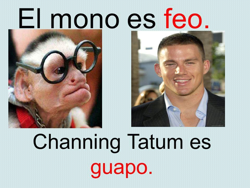 Channing Tatum es guapo.