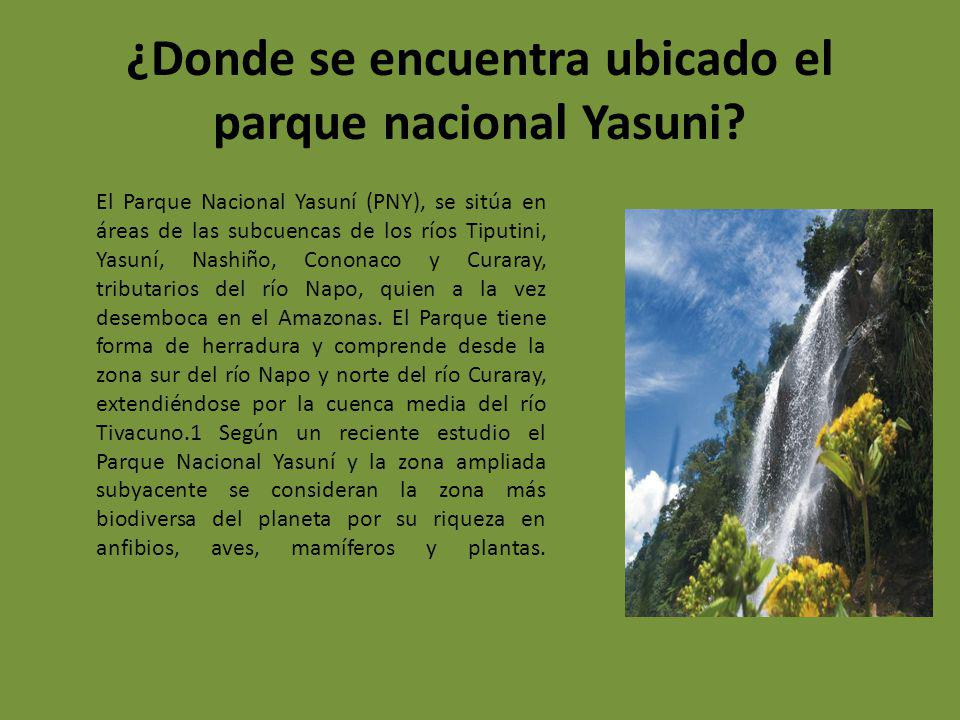 ¿Donde se encuentra ubicado el parque nacional Yasuni