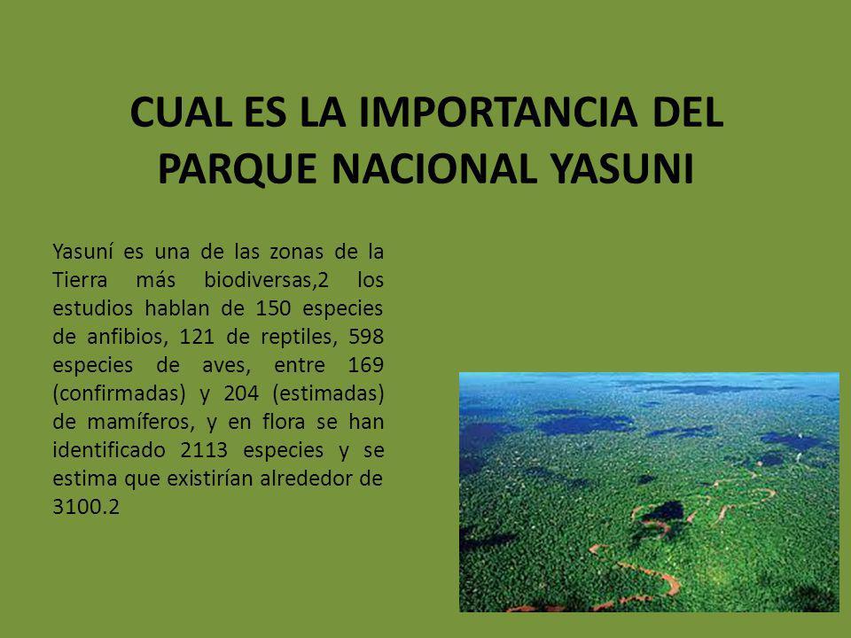 Cual es la importancia del parque nacional yasuni