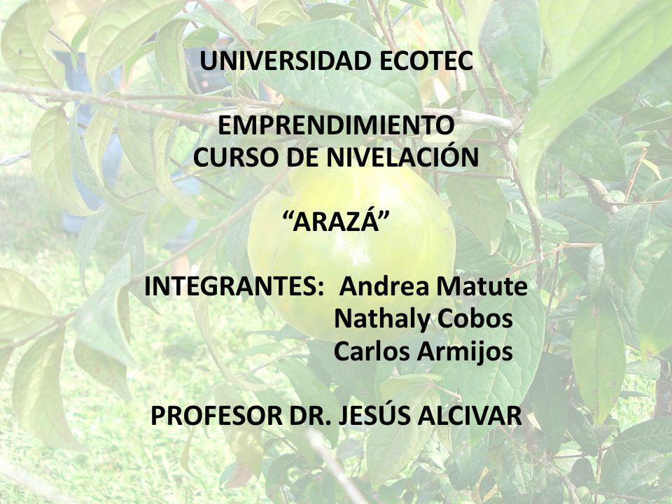 INTEGRANTES: Andrea Matute PROFESOR DR. JESÚS ALCIVAR