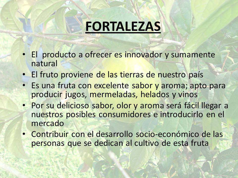 FORTALEZAS El producto a ofrecer es innovador y sumamente natural